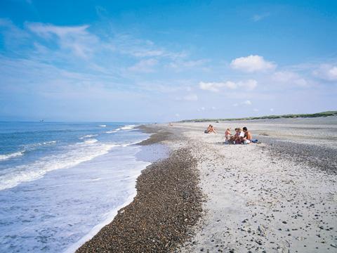 Familie am Strand an der dänischen Nordsee